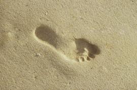 Fußreflexzonen, Reflexzonentherapie am Fuß